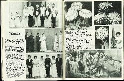 Issue No 191 May 20, 1970 - A beautiful array of c...